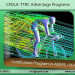 Program in ANSYS - FEA
